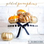 DIY Gilded Pumpkins