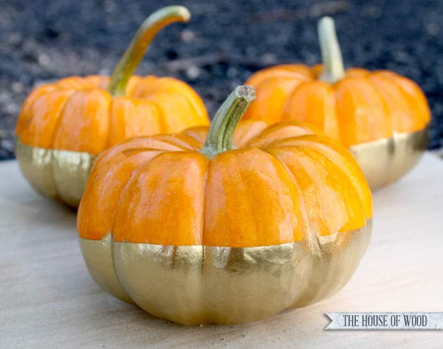 gold dipped pumpkins