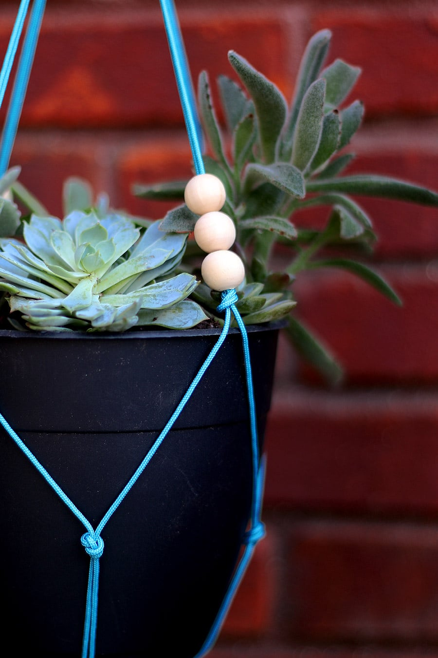 How to build a DIY hanging planter | Jen Woodhouse