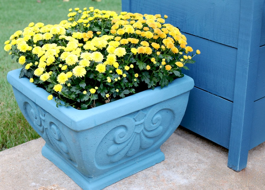 How to paint a cement planter with Chalk Paint® by Annie Sloan