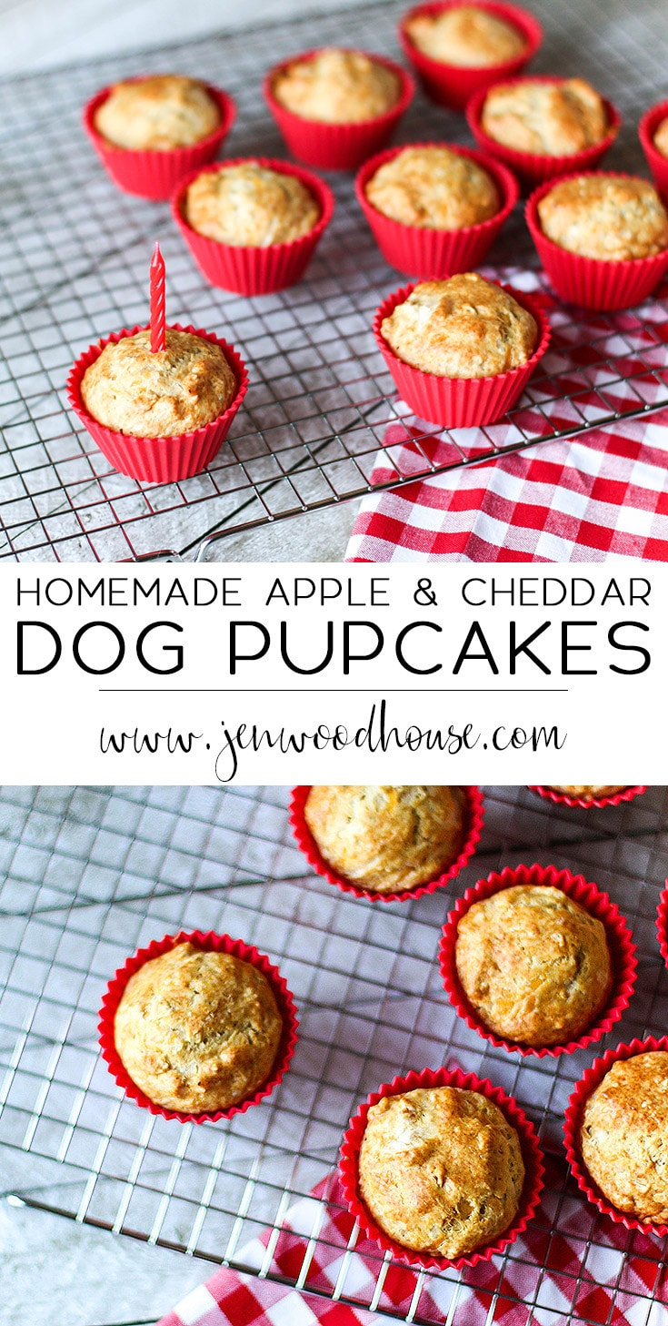 Homemade Apple and Cheddar Dog Cupcakes (Pupcakes!) | www.JenWoodhouse.com