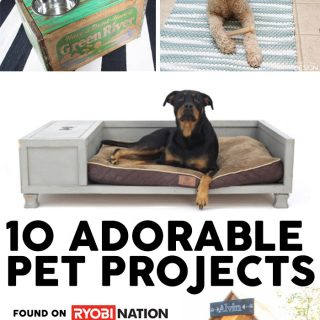 10 Adorable DIY Pet Projects for your favorite fur baby!