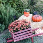 Rustic Fall Wheelbarrow
