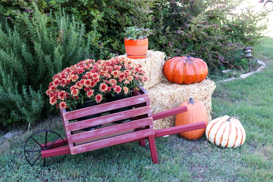 Perfect for Fall decor! How to build a rustic wheelbarrow