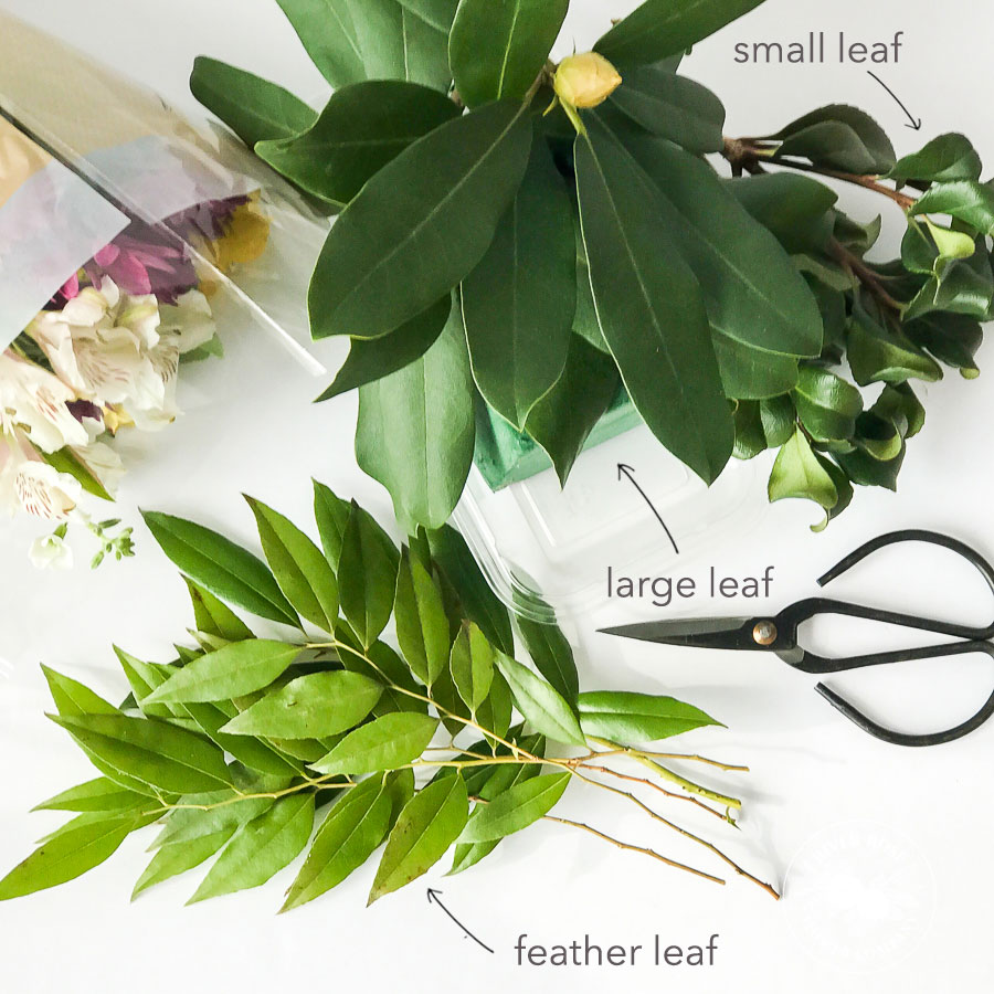 Different types of greenery to add to your DIY bouquet centerpiece