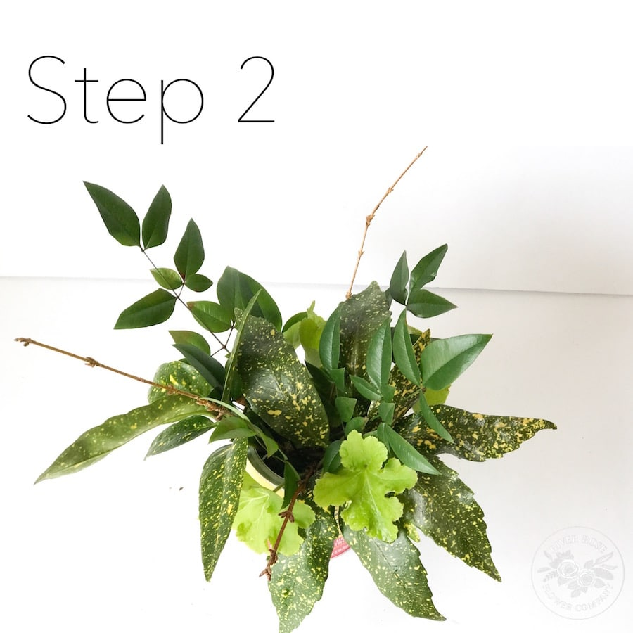 Floral design 101: create professional arrangements by using basic techniques.