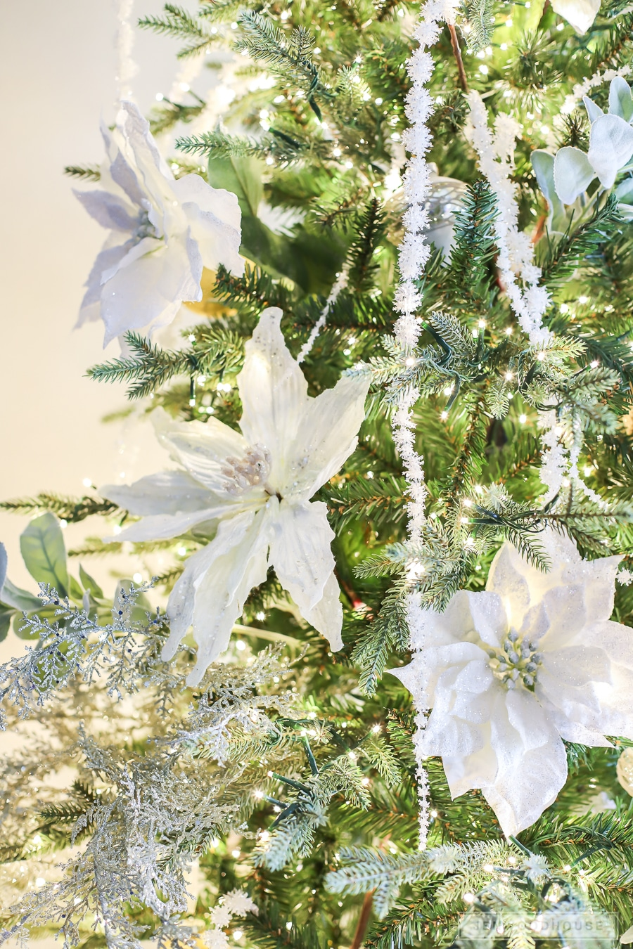 White poinsettias on Christmas tree