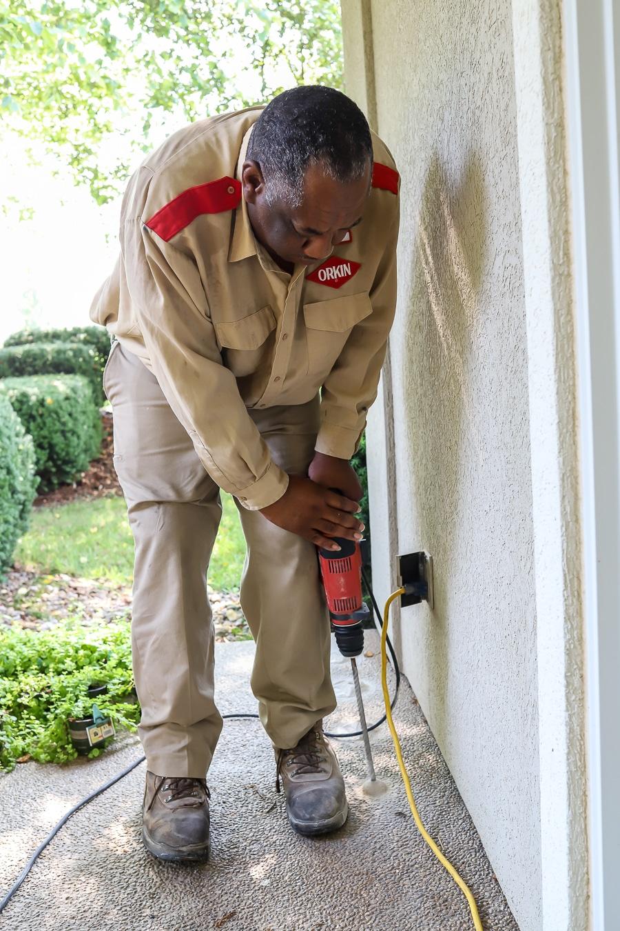 Orkin pest control termite prevention treatment