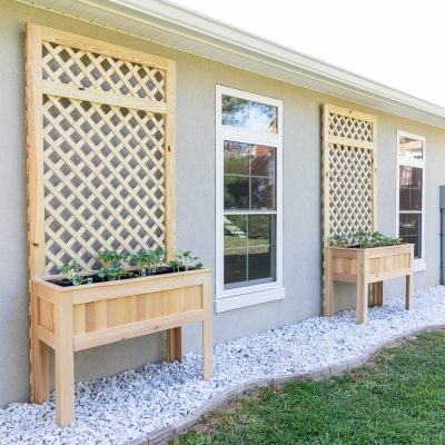 Raised Planter Box with Trellis