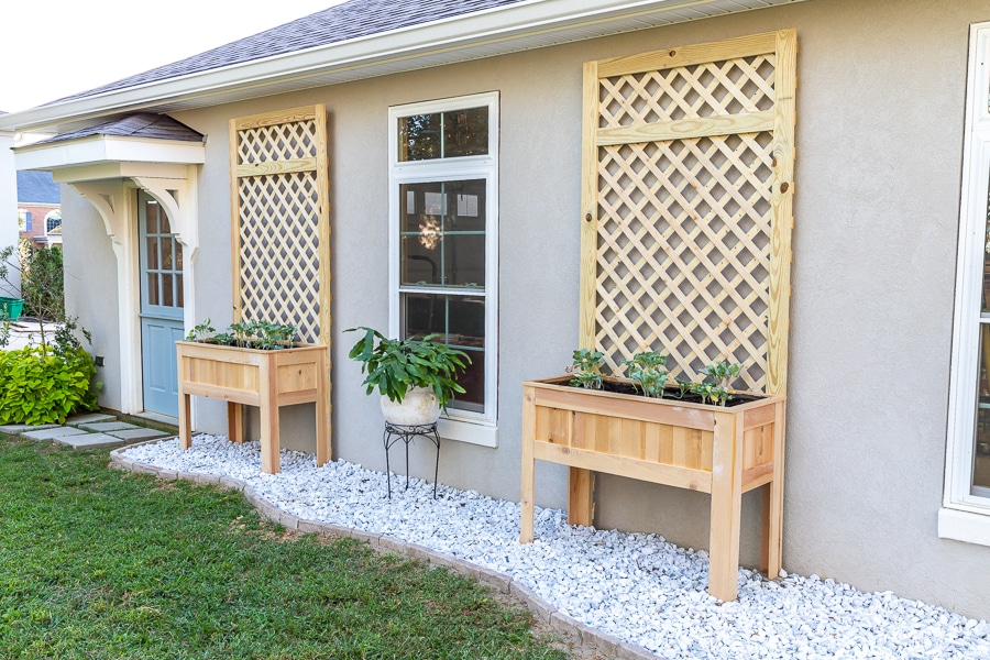 How to build a DIY raised planter with trellis