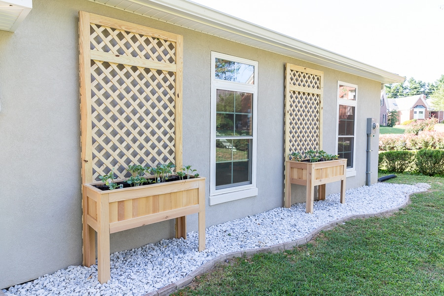 DIY raised planters with trellis - easy