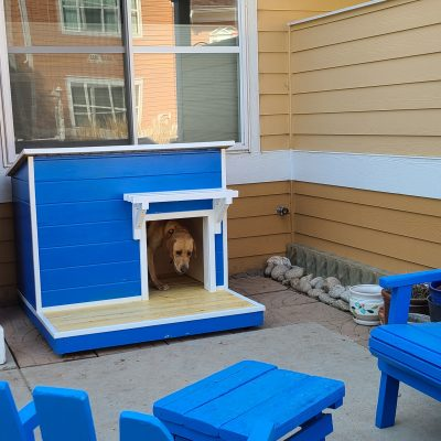 Dog house with deck