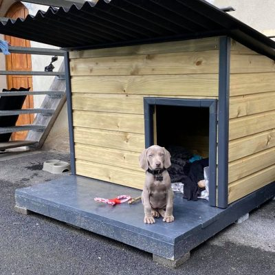 Doghouse with deck (without deck !)