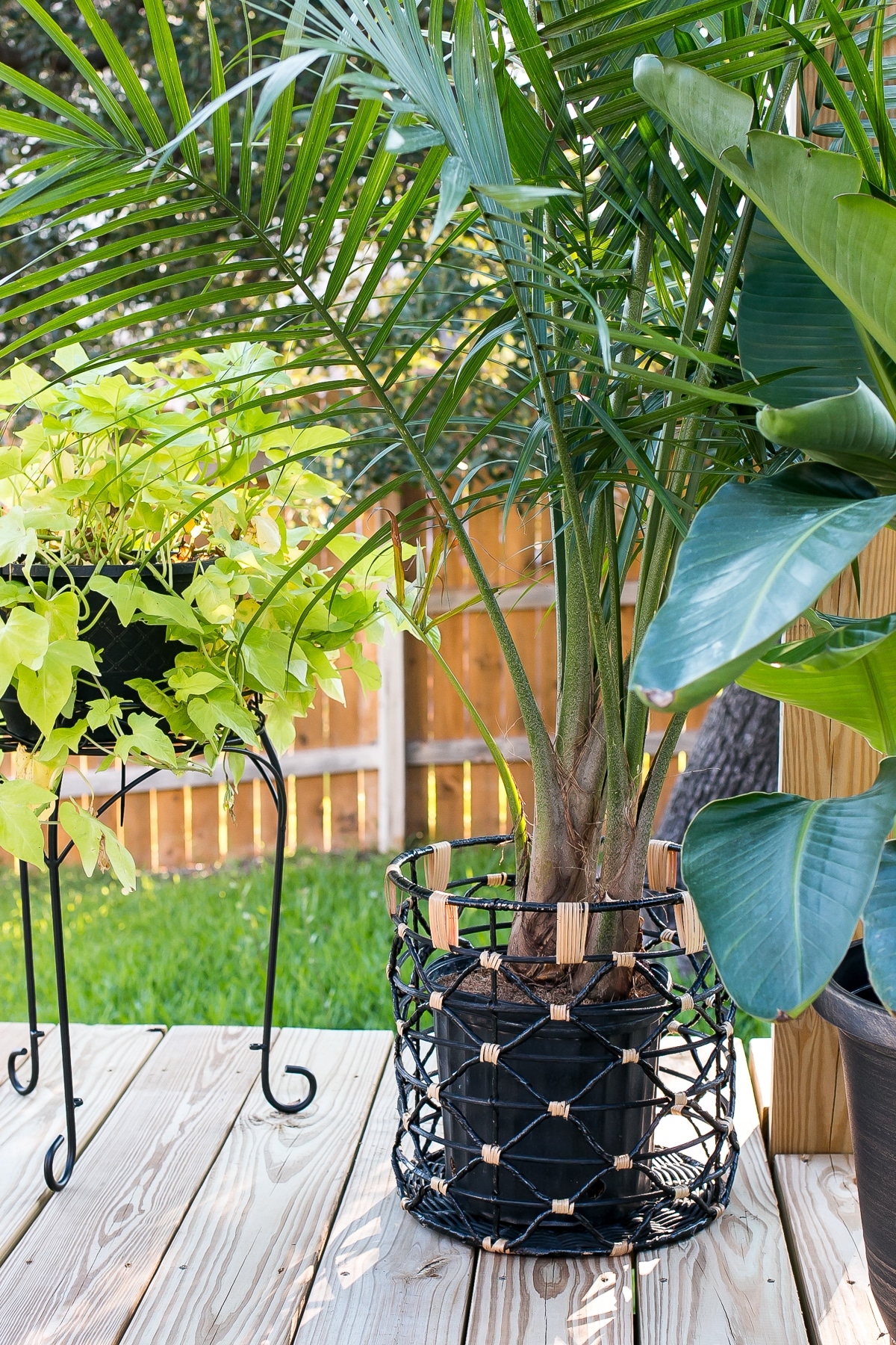 How To Build A Diy Pergola With Simpson Strong Tie Outdoor