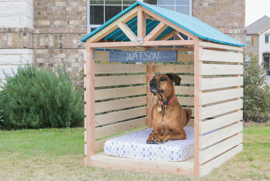 How to build a DIY doghouse gazebo