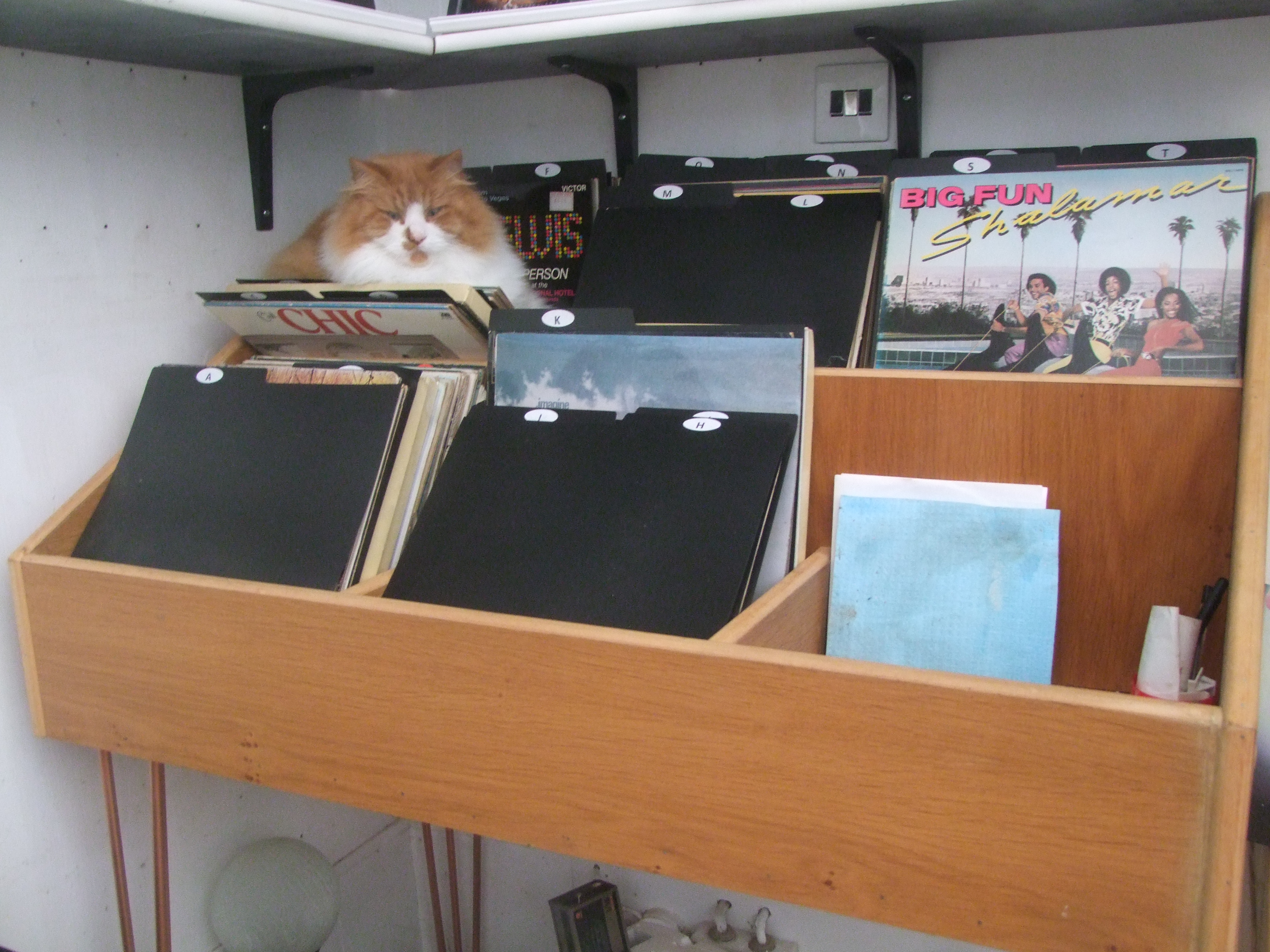 VINYL RECORD DISPLAY & STORAGE