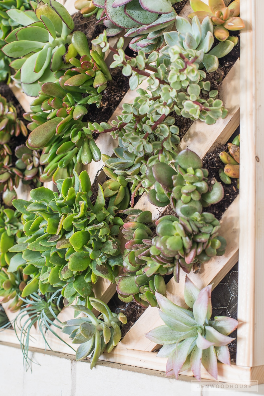 DIY-vertical-succulent-garden