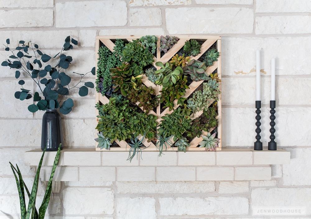 How to create a vertical succulent garden