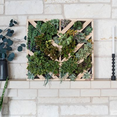 How To Make A Vertical Succulent Garden